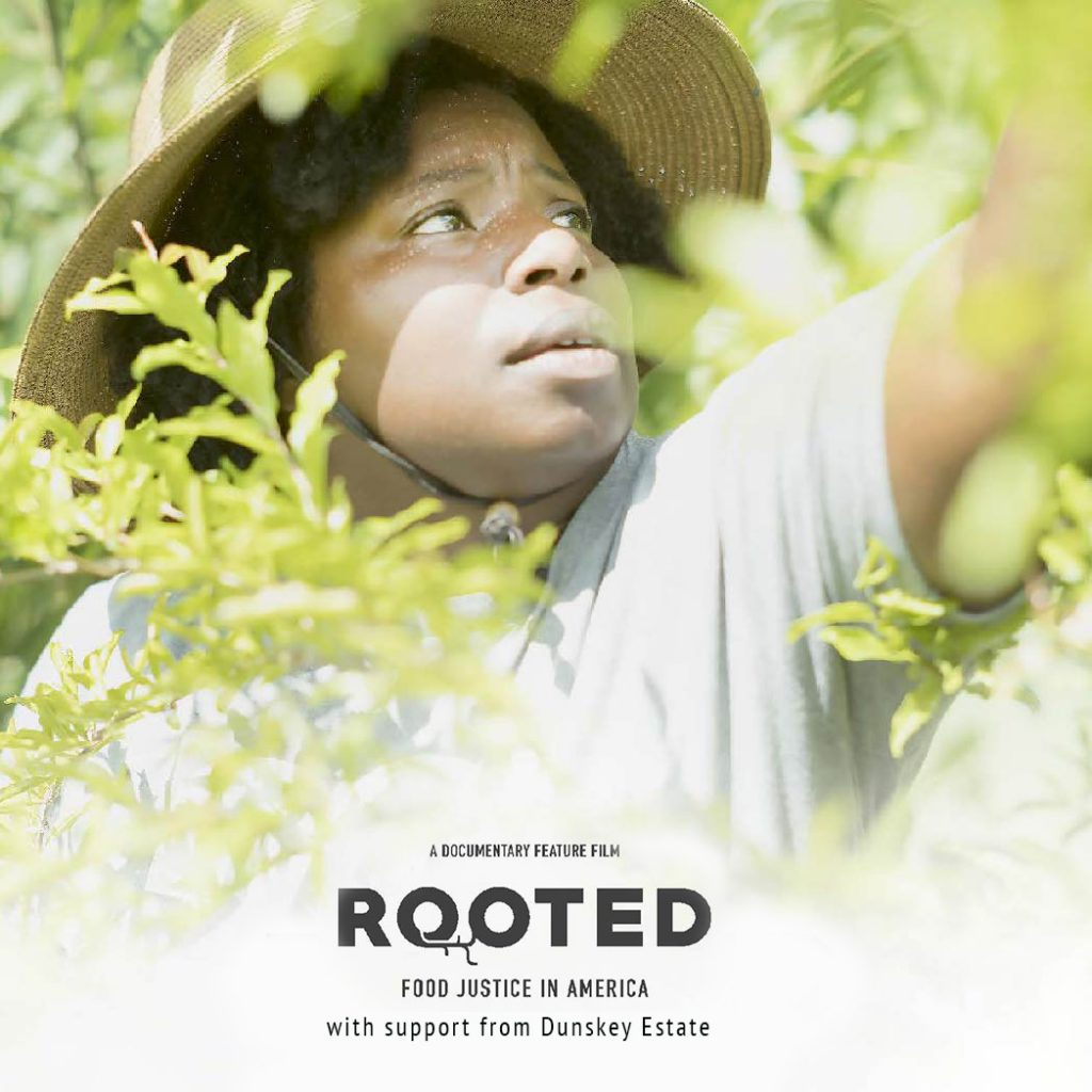 rooted film
